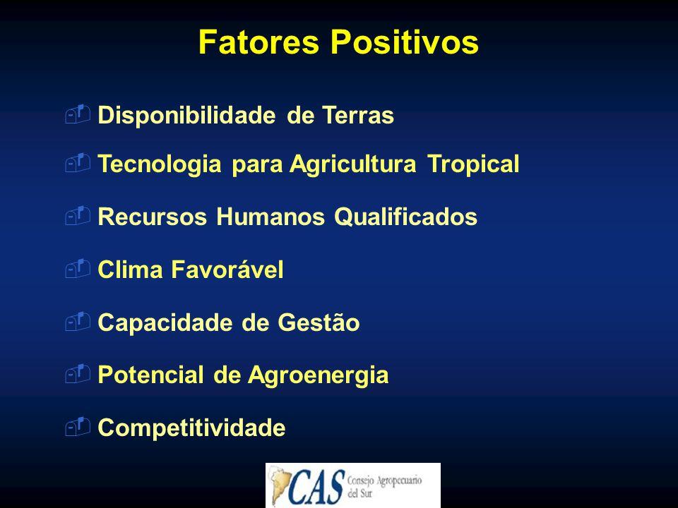  Disponibilidade de Terras  Tecnologia para Agricultura Tropical  Recursos Humanos Qualificados  Clima Favorável  Capacidade de Gestão  Potencial de Agroenergia  Competitividade Fatores Positivos