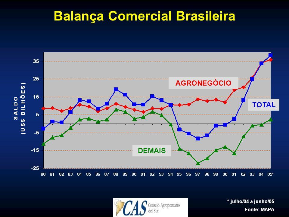 Balança Comercial Brasileira TOTAL AGRONEGÓCIO DEMAIS * julho/04 a junho/05 Fonte: MAPA