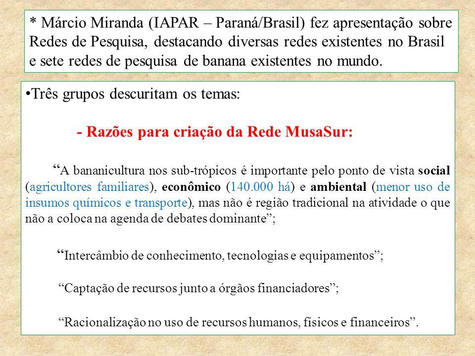 * Márcio Miranda (IAPAR – Paraná/Brasil) fez apresentação sobre Redes de Pesquisa, destacando diversas redes existentes no Brasil e sete redes de pesq