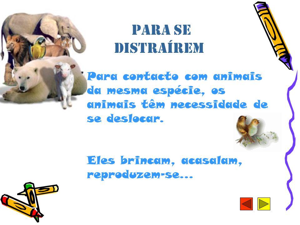Para se distraírem Para contacto com animais da mesma espécie, os animais têm necessidade de se deslocar.