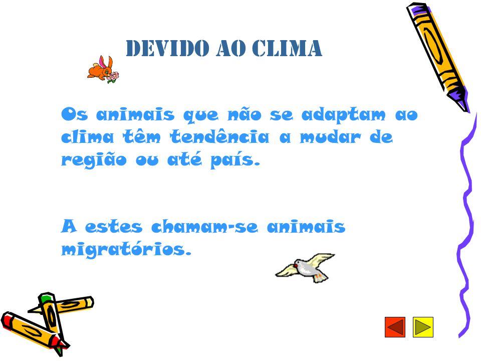 Devido ao clima Os animais que não se adaptam ao clima têm tendência a mudar de região ou até país.