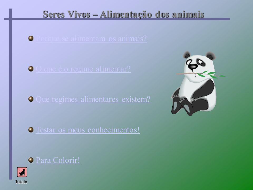 Porque se alimentam os animais? O que é o regime alimentar? Que regimes alimentares existem? Testar os meus conhecimentos! Para Colorir! Início