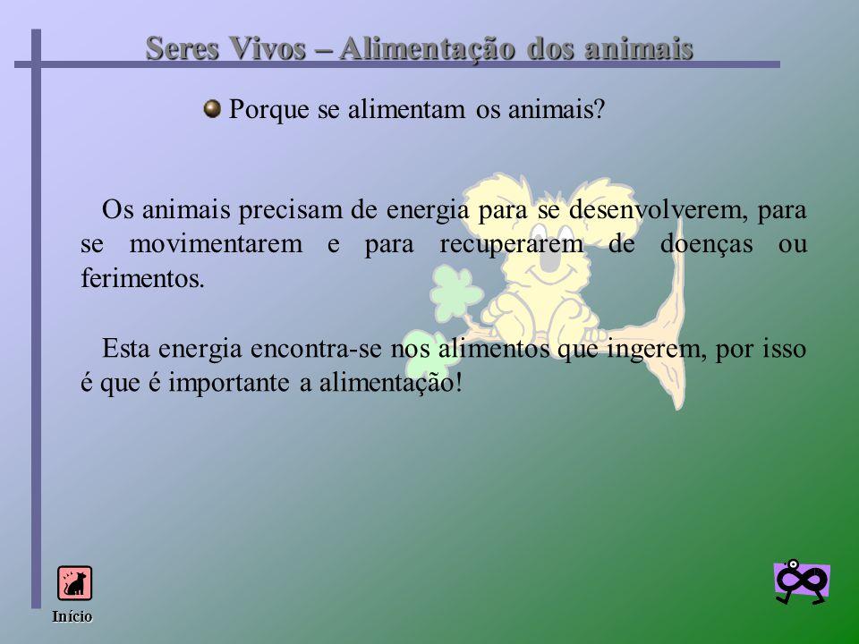 Seres Vivos – Alimentação dos animais Porque se alimentam os animais? Os animais precisam de energia para se desenvolverem, para se movimentarem e par