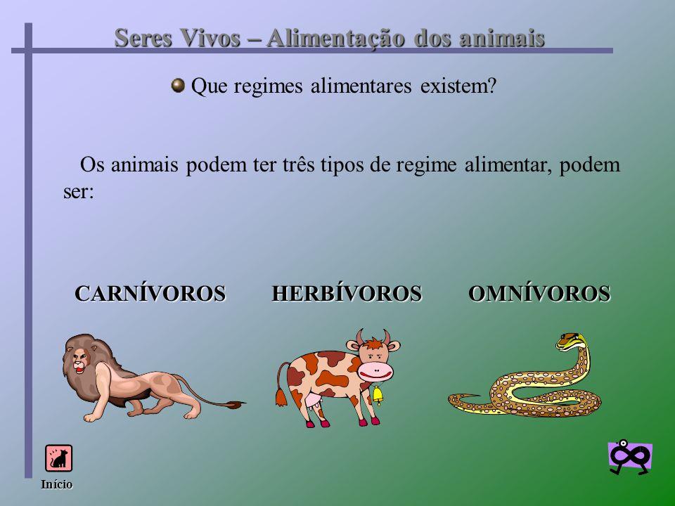 Seres Vivos – Alimentação dos animais Que regimes alimentares existem? Os animais podem ter três tipos de regime alimentar, podem ser: CARNÍVOROS HERB