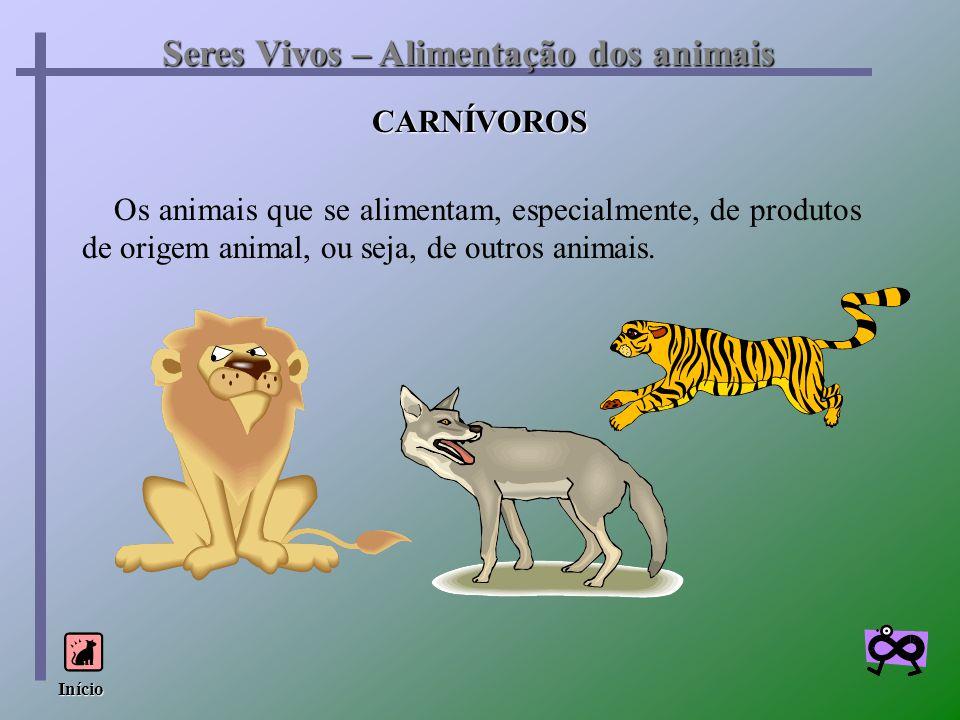 Seres Vivos – Alimentação dos animais CARNÍVOROS Os animais que se alimentam, especialmente, de produtos de origem animal, ou seja, de outros animais.