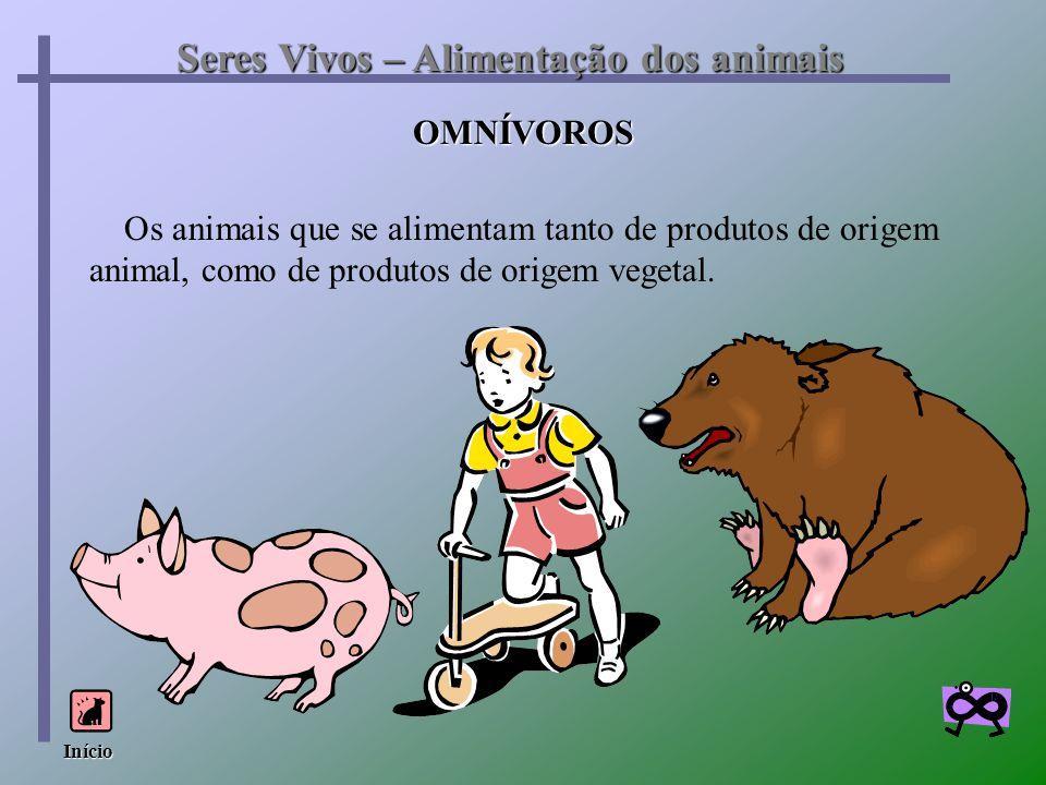 Os animais que se alimentam tanto de produtos de origem animal, como de produtos de origem vegetal. Seres Vivos – Alimentação dos animais OMNÍVOROS In