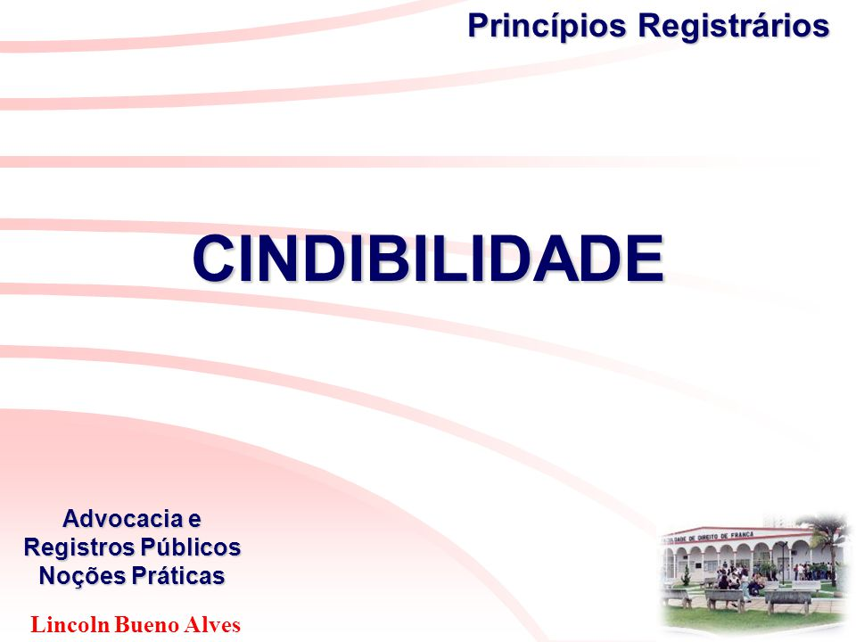 Lincoln Bueno Alves Advocacia e Registros Públicos Noções Práticas Princípios Registrários CINDIBILIDADE