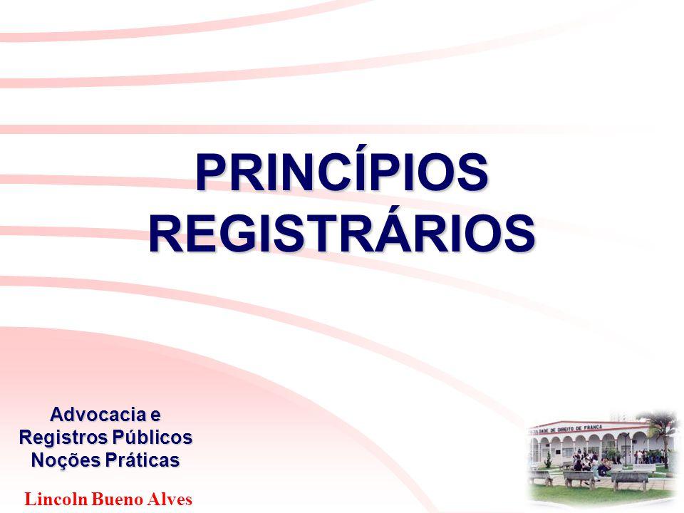 Lincoln Bueno Alves Advocacia e Registros Públicos Noções Práticas PRINCÍPIOS REGISTRÁRIOS