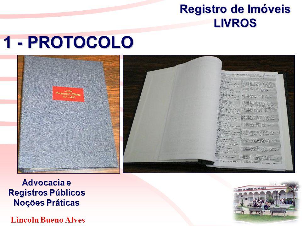 Lincoln Bueno Alves Advocacia e Registros Públicos Noções Práticas 1 - PROTOCOLO Registro de Imóveis LIVROS