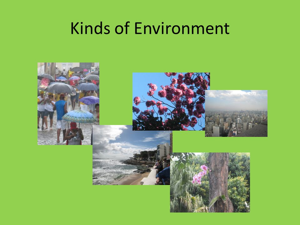 Kinds of Environment