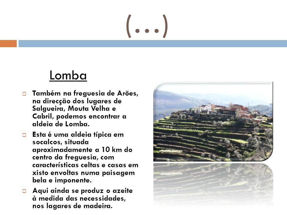 (…)  Também na freguesia de Arões, na direcção dos lugares de Salgueira, Mouta Velha e Cabril, podemos encontrar a aldeia de Lomba.  Esta é uma alde