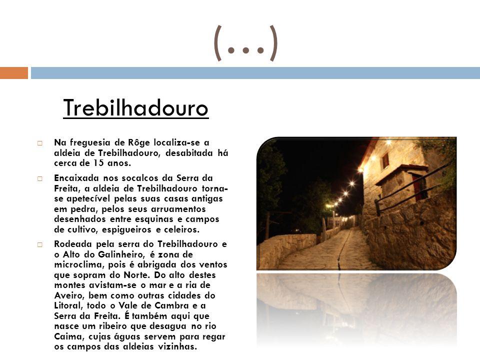(…)  Na freguesia de Rôge localiza-se a aldeia de Trebilhadouro, desabitada há cerca de 15 anos.  Encaixada nos socalcos da Serra da Freita, a aldei