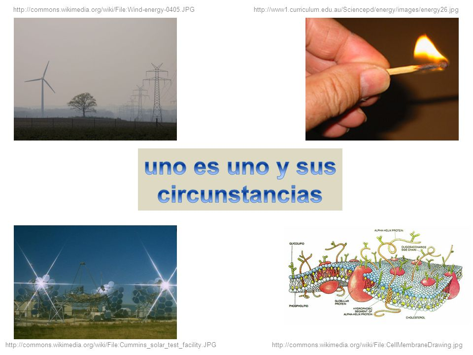 http://commons.wikimedia.org/wiki/File:Wind-energy-0405.JPG http://www1.curriculum.edu.au/Sciencepd/energy/images/energy26.jpg http://commons.wikimedia.org/wiki/File:Cummins_solar_test_facility.JPGhttp://commons.wikimedia.org/wiki/File:CellMembraneDrawing.jpg