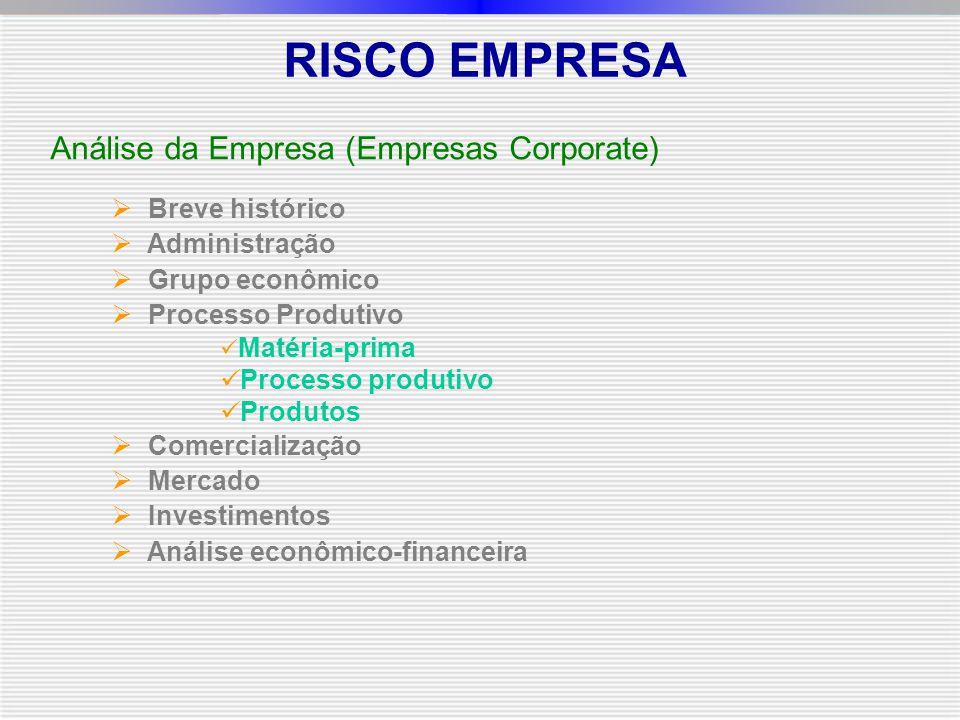Análise da Empresa (Empresas Corporate)  Breve histórico  Administração  Grupo econômico  Processo Produtivo Matéria-prima Processo produtivo Produtos  Comercialização  Mercado  Investimentos  Análise econômico-financeira RISCO EMPRESA