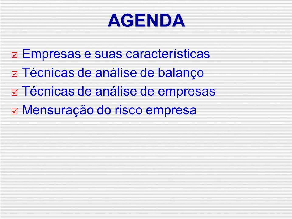 AGENDA  Empresas e suas características  Técnicas de análise de balanço  Técnicas de análise de empresas  Mensuração do risco empresa