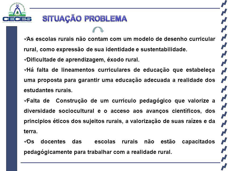 As escolas rurais não contam com um modelo de desenho curricular rural, como expressão de sua identidade e sustentabilidade.