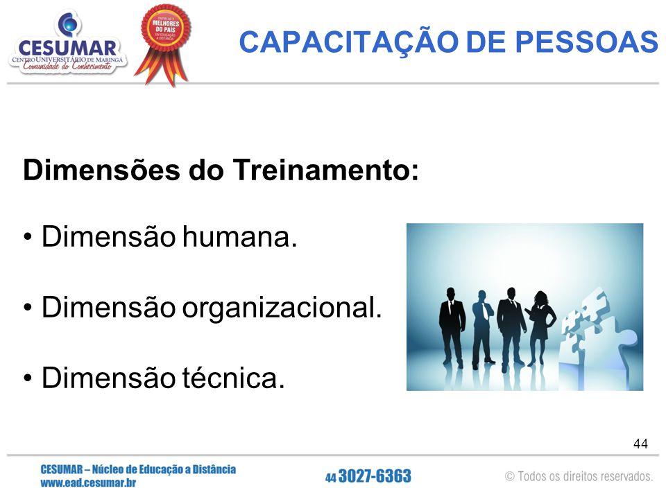 44 CAPACITAÇÃO DE PESSOAS Dimensões do Treinamento: Dimensão humana.