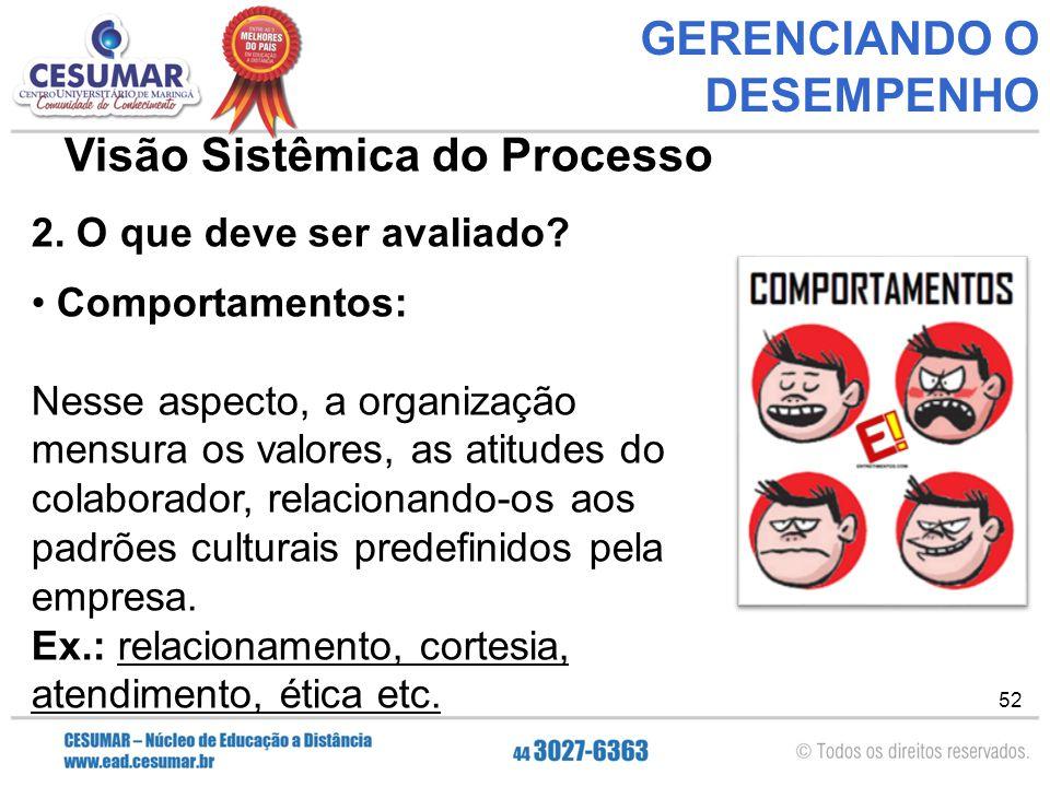 52 GERENCIANDO O DESEMPENHO Visão Sistêmica do Processo 2.