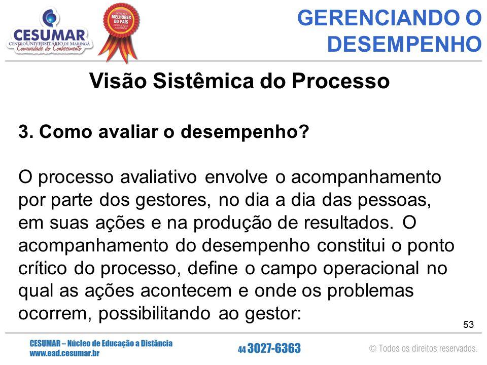 53 GERENCIANDO O DESEMPENHO Visão Sistêmica do Processo 3.