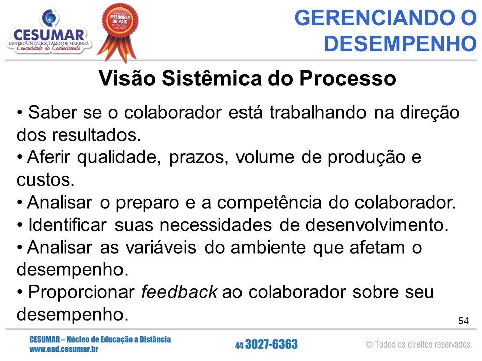54 GERENCIANDO O DESEMPENHO Visão Sistêmica do Processo Saber se o colaborador está trabalhando na direção dos resultados.