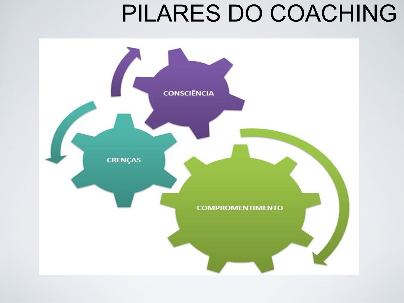 PILARES DO COACHING