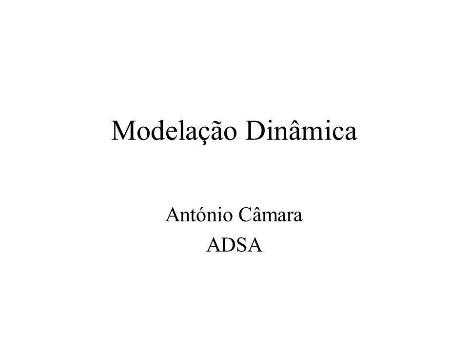 Modelação Dinâmica António Câmara ADSA