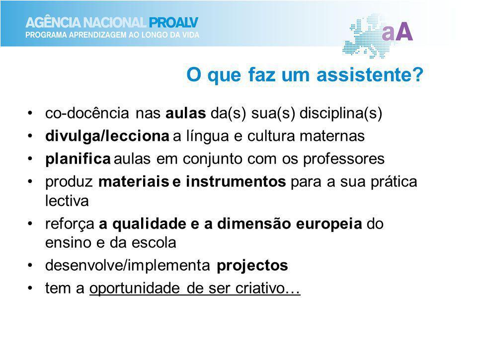 O que faz um assistente? co-docência nas aulas da(s) sua(s) disciplina(s) divulga/lecciona a língua e cultura maternas planifica aulas em conjunto com