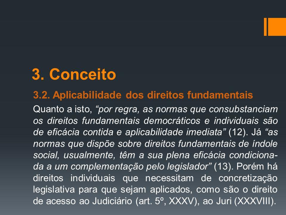"""3. Conceito 3.2. Aplicabilidade dos direitos fundamentais Quanto a isto, """"por regra, as normas que consubstanciam os direitos fundamentais democrático"""