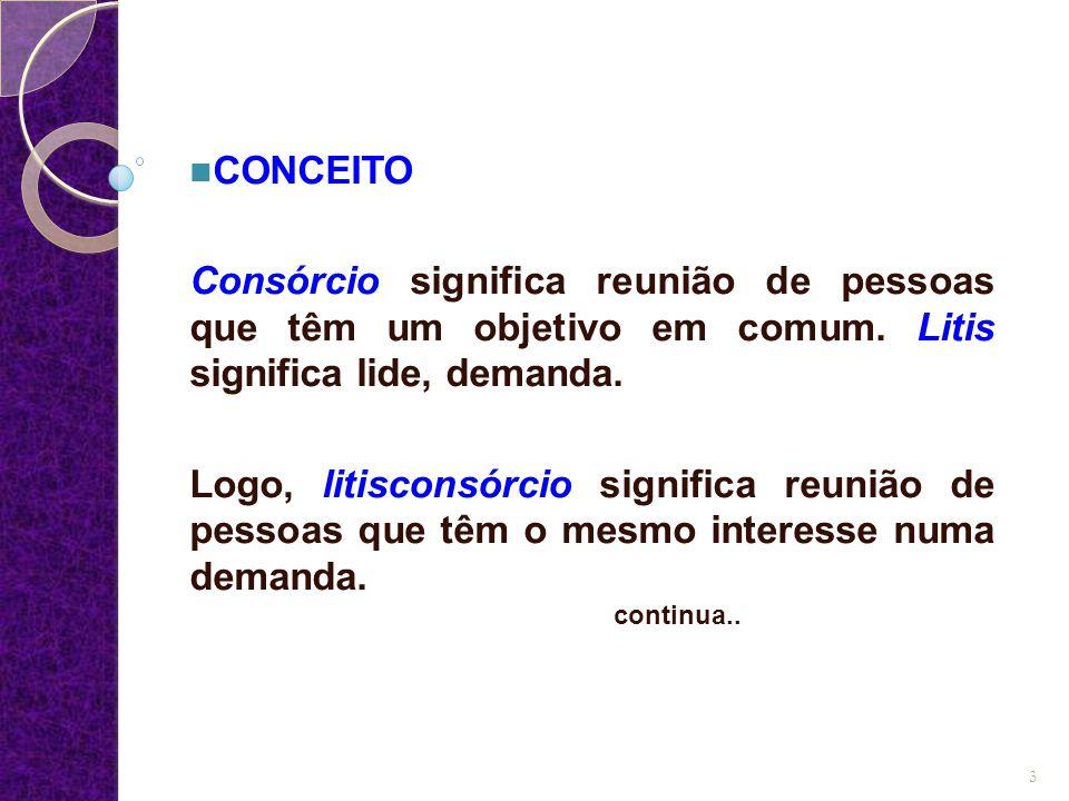 CONCEITO Consórcio significa reunião de pessoas que têm um objetivo em comum. Litis significa lide, demanda. Logo, litisconsórcio significa reunião de