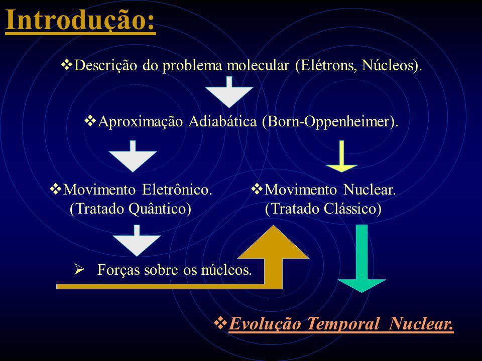 Introdução:  Descrição do problema molecular (Elétrons, Núcleos).  Aproximação Adiabática (Born-Oppenheimer).  Movimento Eletrônico. (Tratado Quânt