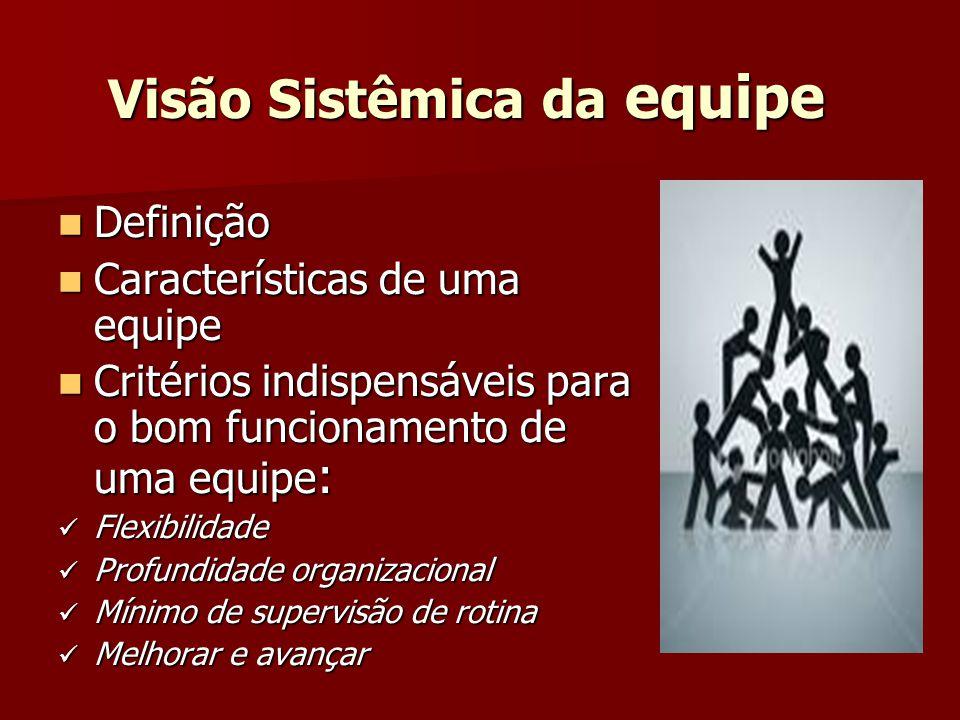 Visão Sistêmica da equipe Definição Definição Características de uma equipe Características de uma equipe Critérios indispensáveis para o bom funciona