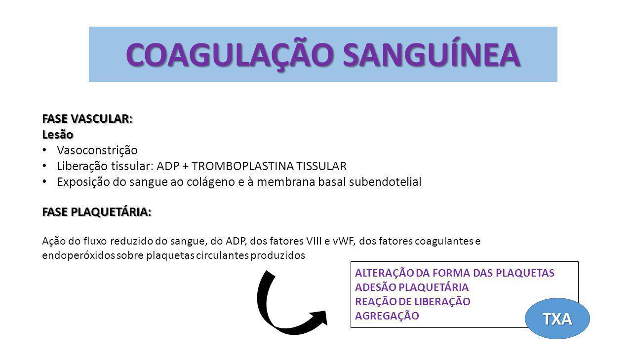 COAGULAÇÃO SANGUÍNEA FASE VASCULAR: Lesão Vasoconstrição Liberação tissular: ADP + TROMBOPLASTINA TISSULAR Exposição do sangue ao colágeno e à membran