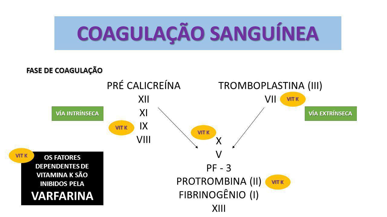 COAGULAÇÃO SANGUÍNEA FASE DE COAGULAÇÃO PRÉ CALICREÍNA XII XI IX VIII TROMBOPLASTINA (III) VII X V PF - 3 PROTROMBINA (II) FIBRINOGÊNIO (I) XIII VÍA I