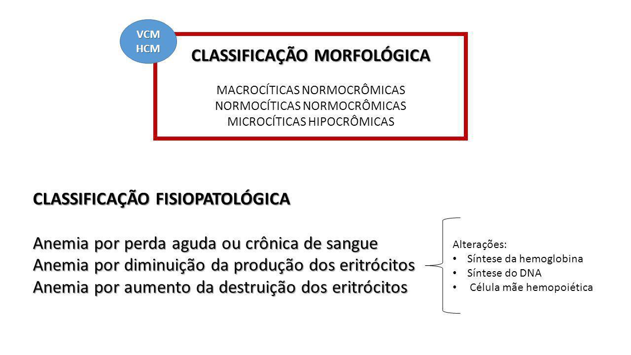 CLASSIFICAÇÃO MORFOLÓGICA MACROCÍTICAS NORMOCRÔMICAS NORMOCÍTICAS NORMOCRÔMICAS MICROCÍTICAS HIPOCRÔMICAS CLASSIFICAÇÃO FISIOPATOLÓGICA Anemia por per