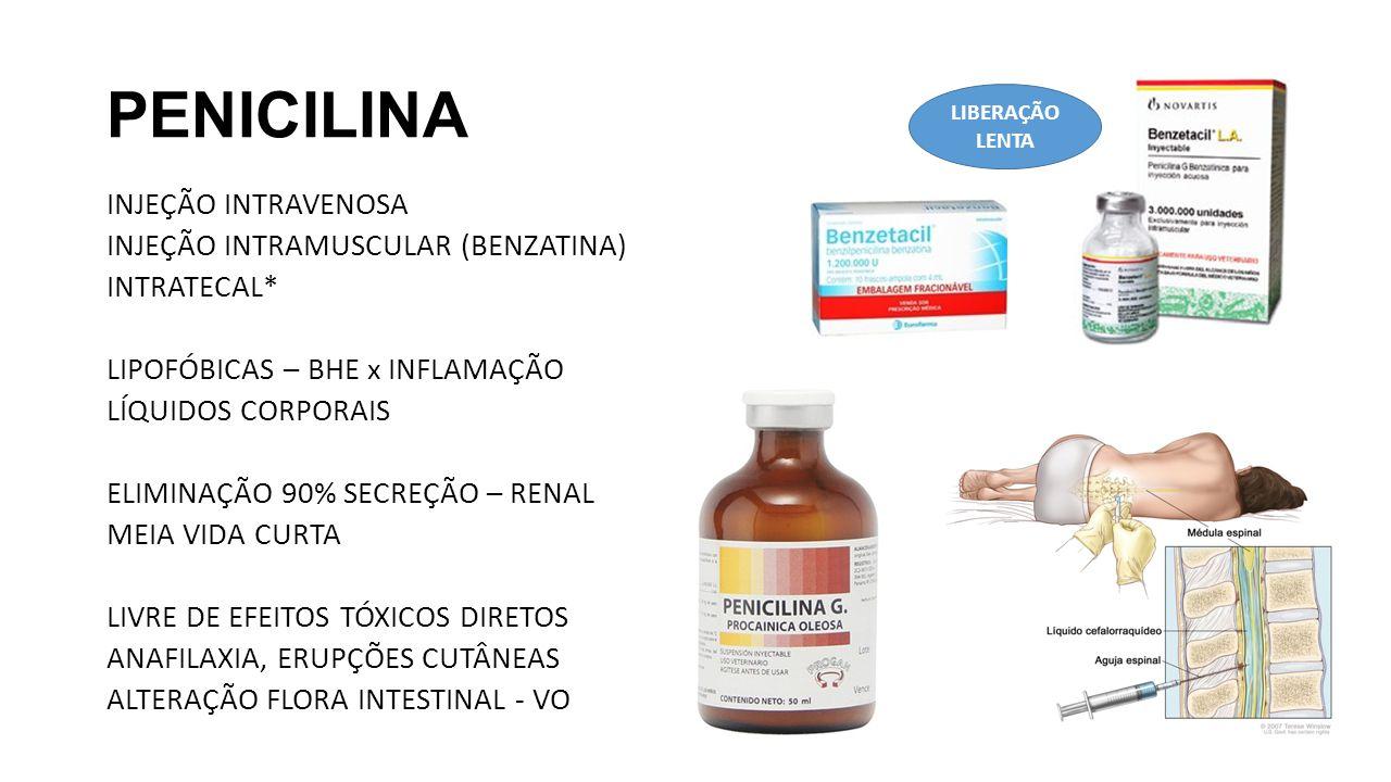 PENICILINA INJEÇÃO INTRAVENOSA INJEÇÃO INTRAMUSCULAR (BENZATINA) INTRATECAL* LIPOFÓBICAS – BHE x INFLAMAÇÃO LÍQUIDOS CORPORAIS ELIMINAÇÃO 90% SECREÇÃO – RENAL MEIA VIDA CURTA LIVRE DE EFEITOS TÓXICOS DIRETOS ANAFILAXIA, ERUPÇÕES CUTÂNEAS ALTERAÇÃO FLORA INTESTINAL - VO LIBERAÇÃO LENTA
