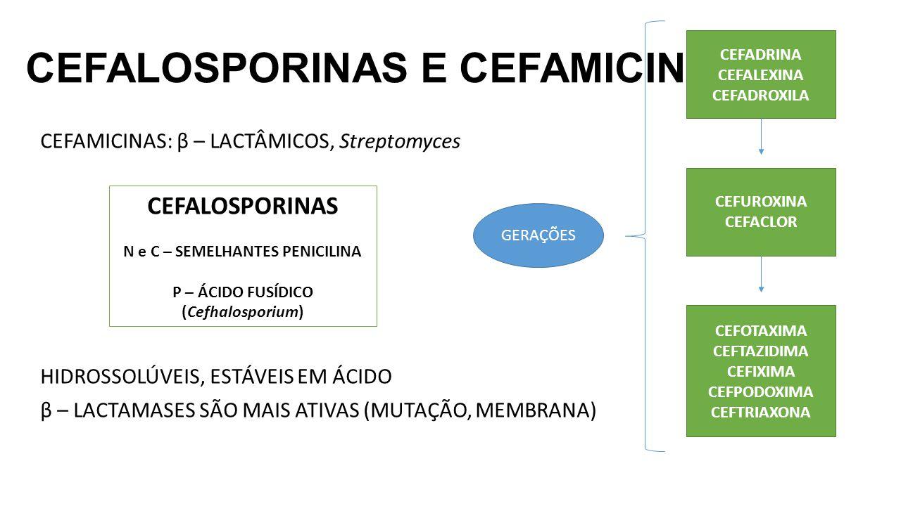 CEFALOSPORINAS E CEFAMICINAS CEFAMICINAS: β – LACTÂMICOS, Streptomyces HIDROSSOLÚVEIS, ESTÁVEIS EM ÁCIDO β – LACTAMASES SÃO MAIS ATIVAS (MUTAÇÃO, MEMB