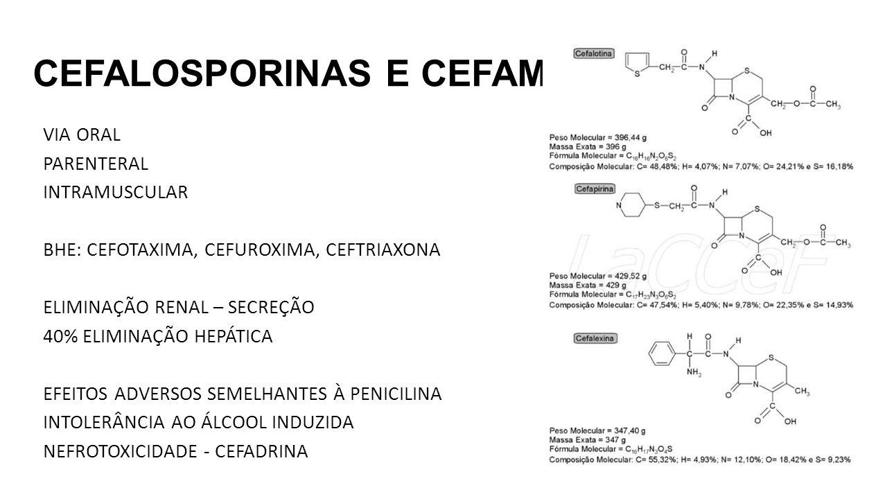 CEFALOSPORINAS E CEFAMICINAS VIA ORAL PARENTERAL INTRAMUSCULAR BHE: CEFOTAXIMA, CEFUROXIMA, CEFTRIAXONA ELIMINAÇÃO RENAL – SECREÇÃO 40% ELIMINAÇÃO HEPÁTICA EFEITOS ADVERSOS SEMELHANTES À PENICILINA INTOLERÂNCIA AO ÁLCOOL INDUZIDA NEFROTOXICIDADE - CEFADRINA
