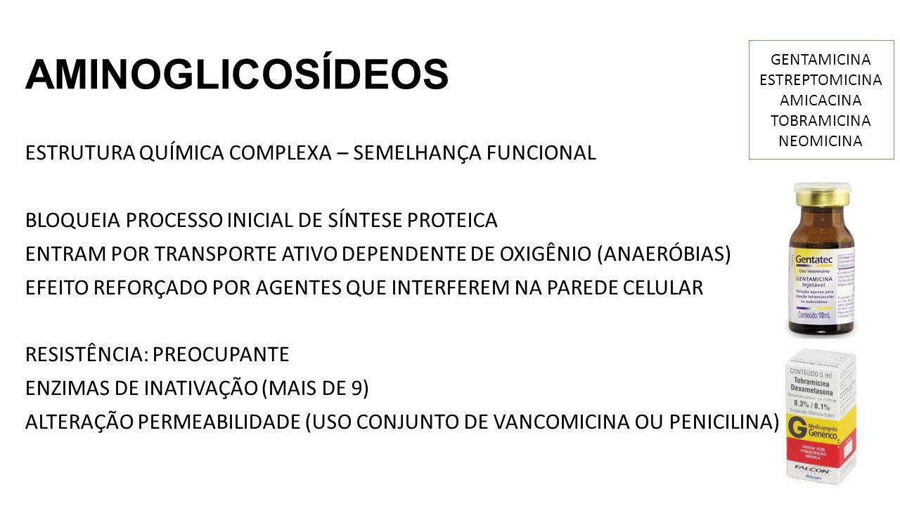 AMINOGLICOSÍDEOS ESTRUTURA QUÍMICA COMPLEXA – SEMELHANÇA FUNCIONAL BLOQUEIA PROCESSO INICIAL DE SÍNTESE PROTEICA ENTRAM POR TRANSPORTE ATIVO DEPENDENTE DE OXIGÊNIO (ANAERÓBIAS) EFEITO REFORÇADO POR AGENTES QUE INTERFEREM NA PAREDE CELULAR RESISTÊNCIA: PREOCUPANTE ENZIMAS DE INATIVAÇÃO (MAIS DE 9) ALTERAÇÃO PERMEABILIDADE (USO CONJUNTO DE VANCOMICINA OU PENICILINA) GENTAMICINA ESTREPTOMICINA AMICACINA TOBRAMICINA NEOMICINA