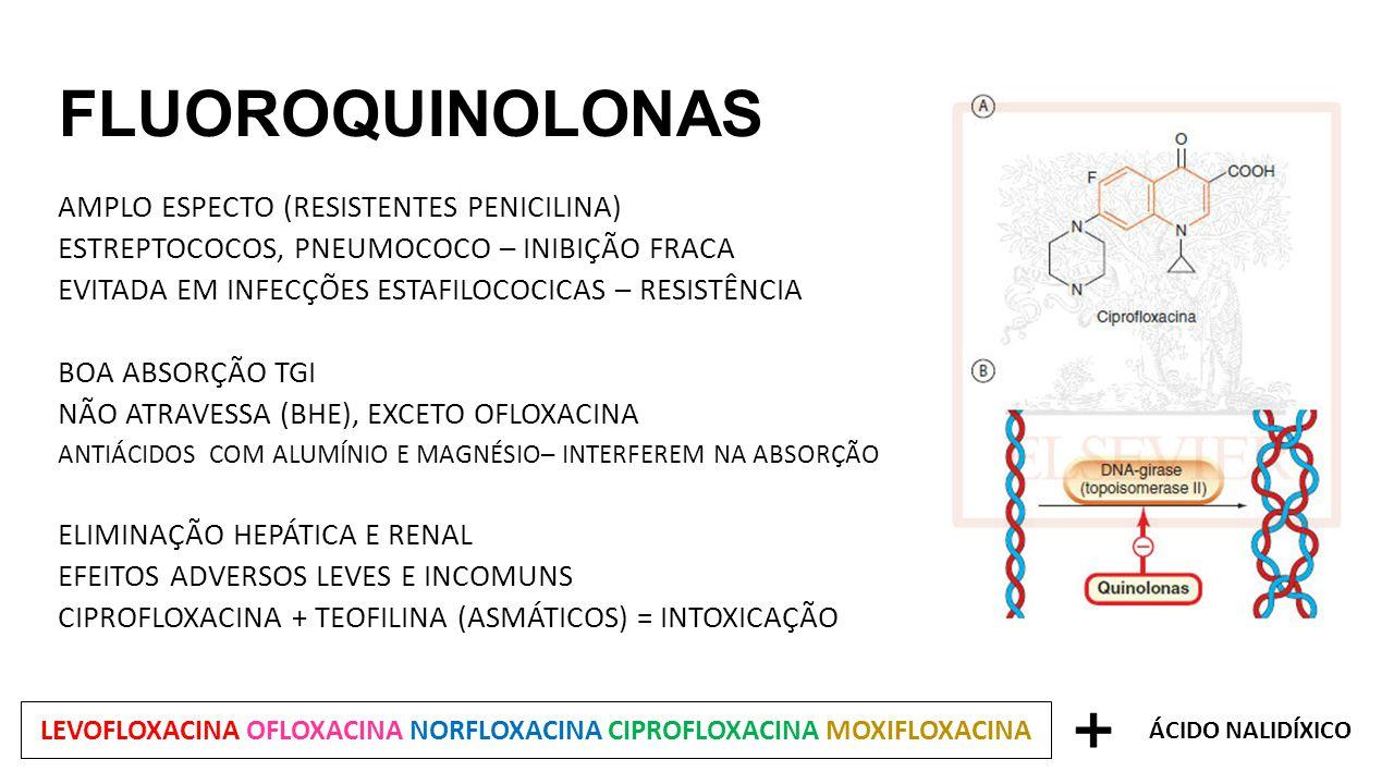 FLUOROQUINOLONAS AMPLO ESPECTO (RESISTENTES PENICILINA) ESTREPTOCOCOS, PNEUMOCOCO – INIBIÇÃO FRACA EVITADA EM INFECÇÕES ESTAFILOCOCICAS – RESISTÊNCIA BOA ABSORÇÃO TGI NÃO ATRAVESSA (BHE), EXCETO OFLOXACINA ANTIÁCIDOS COM ALUMÍNIO E MAGNÉSIO– INTERFEREM NA ABSORÇÃO ELIMINAÇÃO HEPÁTICA E RENAL EFEITOS ADVERSOS LEVES E INCOMUNS CIPROFLOXACINA + TEOFILINA (ASMÁTICOS) = INTOXICAÇÃO LEVOFLOXACINA OFLOXACINA NORFLOXACINA CIPROFLOXACINA MOXIFLOXACINA ÁCIDO NALIDÍXICO