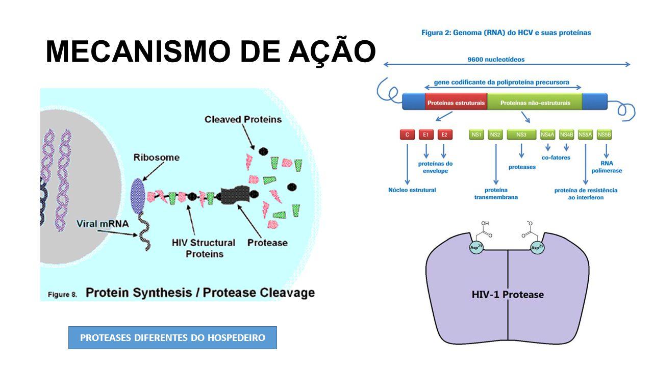 MECANISMO DE AÇÃO PROTEASES DIFERENTES DO HOSPEDEIRO