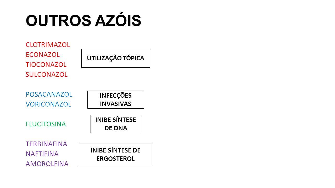 OUTROS AZÓIS CLOTRIMAZOL ECONAZOL TIOCONAZOL SULCONAZOL POSACANAZOL VORICONAZOL FLUCITOSINA TERBINAFINA NAFTIFINA AMOROLFINA UTILIZAÇÃO TÓPICA INFECÇÕ