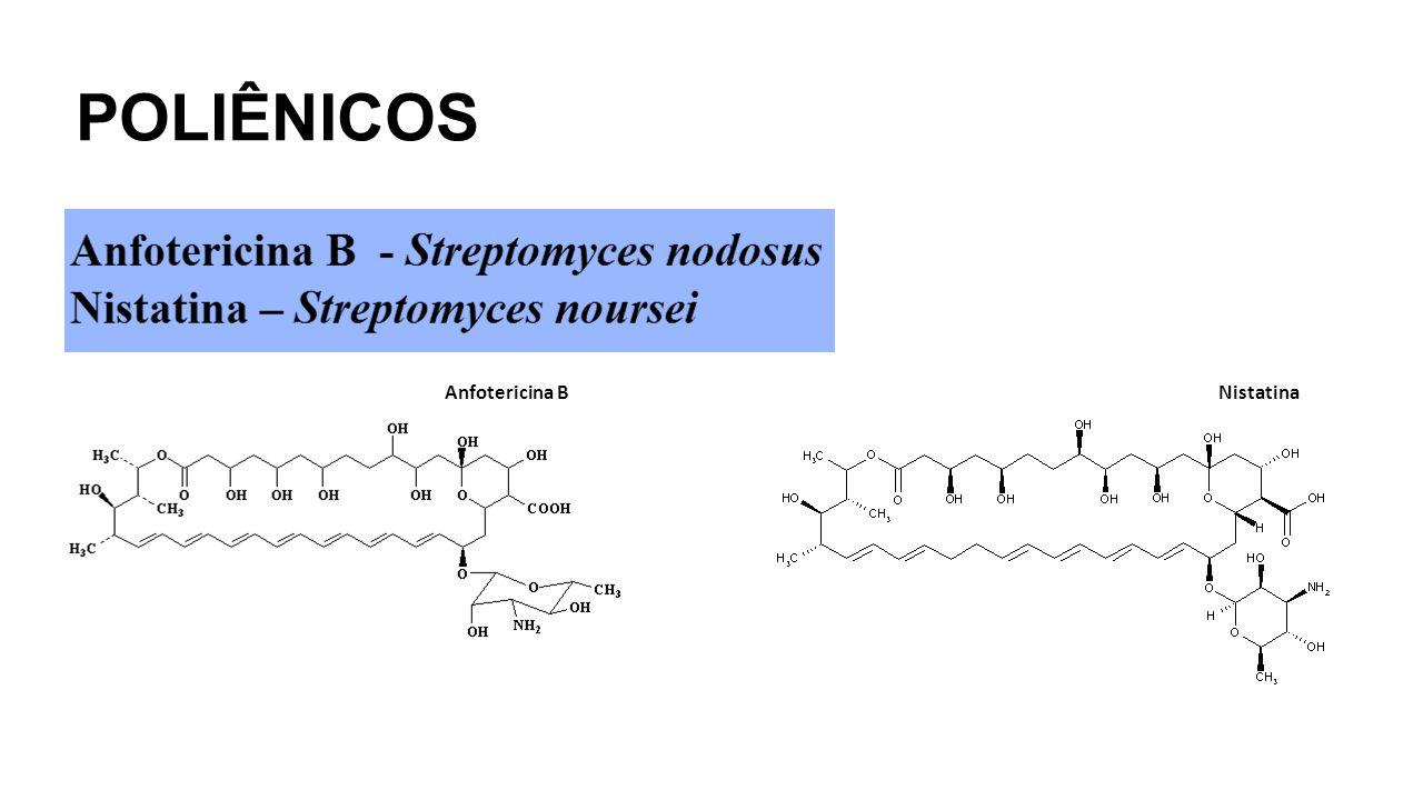 POLIÊNICOS NistatinaAnfotericina B