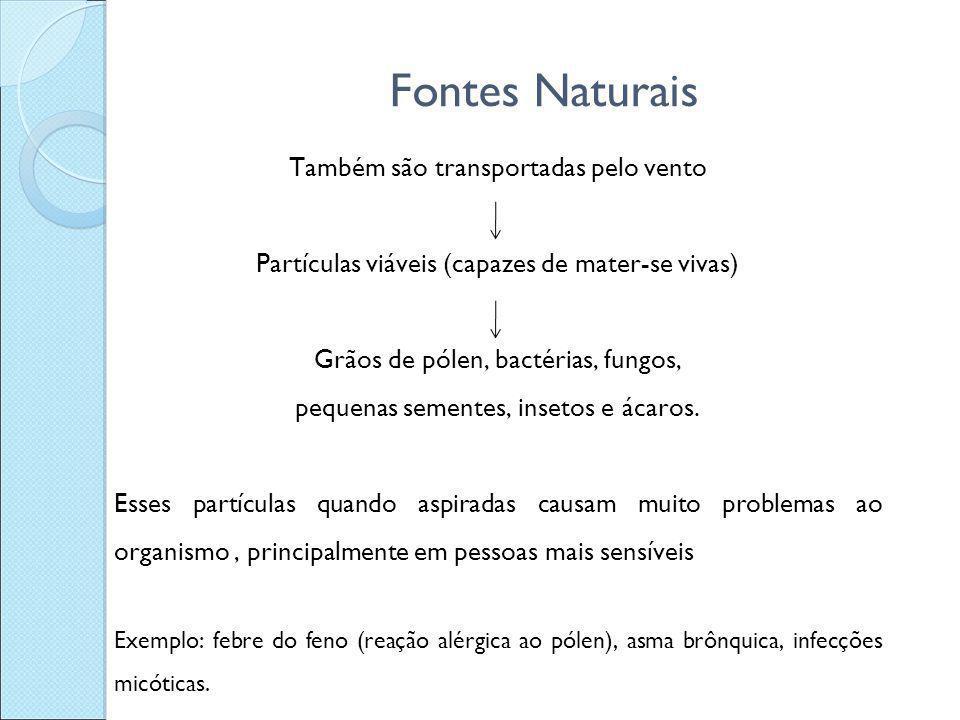 Fontes Naturais Também são transportadas pelo vento Partículas viáveis (capazes de mater-se vivas) Grãos de pólen, bactérias, fungos, pequenas semente