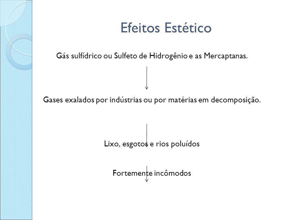 Efeitos Estético Gás sulfídrico ou Sulfeto de Hidrogênio e as Mercaptanas. Gases exalados por indústrias ou por matérias em decomposição. Lixo, esgoto
