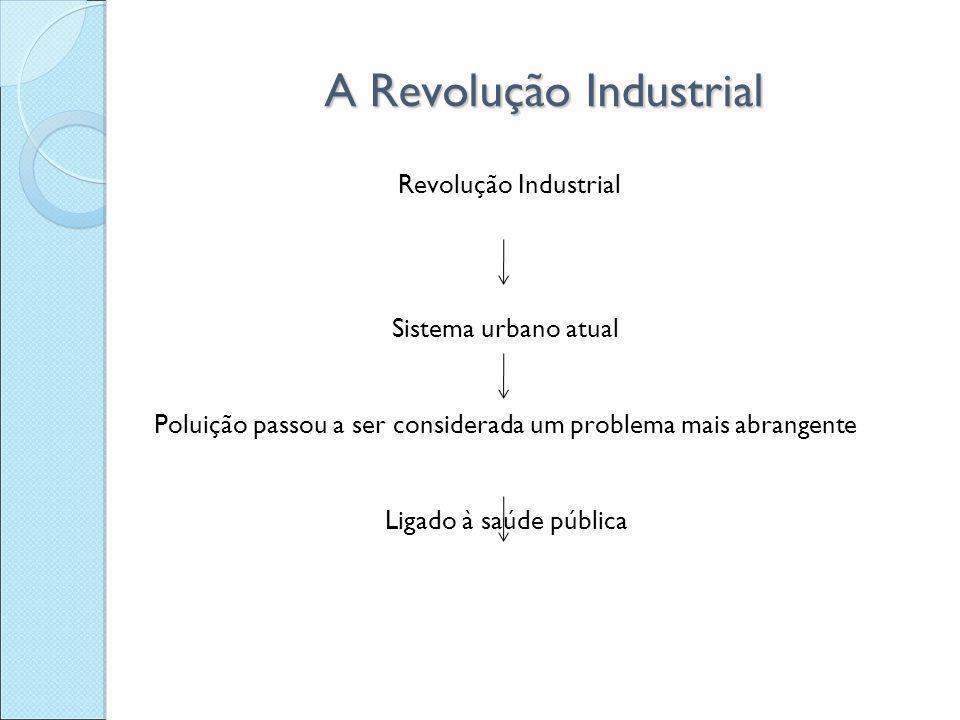 A Revolução Industrial Revolução Industrial Sistema urbano atual Poluição passou a ser considerada um problema mais abrangente Ligado à saúde pública