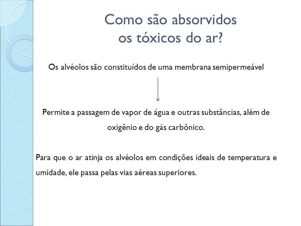 Como são absorvidos os tóxicos do ar? Os alvéolos são constituídos de uma membrana semipermeável Permite a passagem de vapor de água e outras substânc