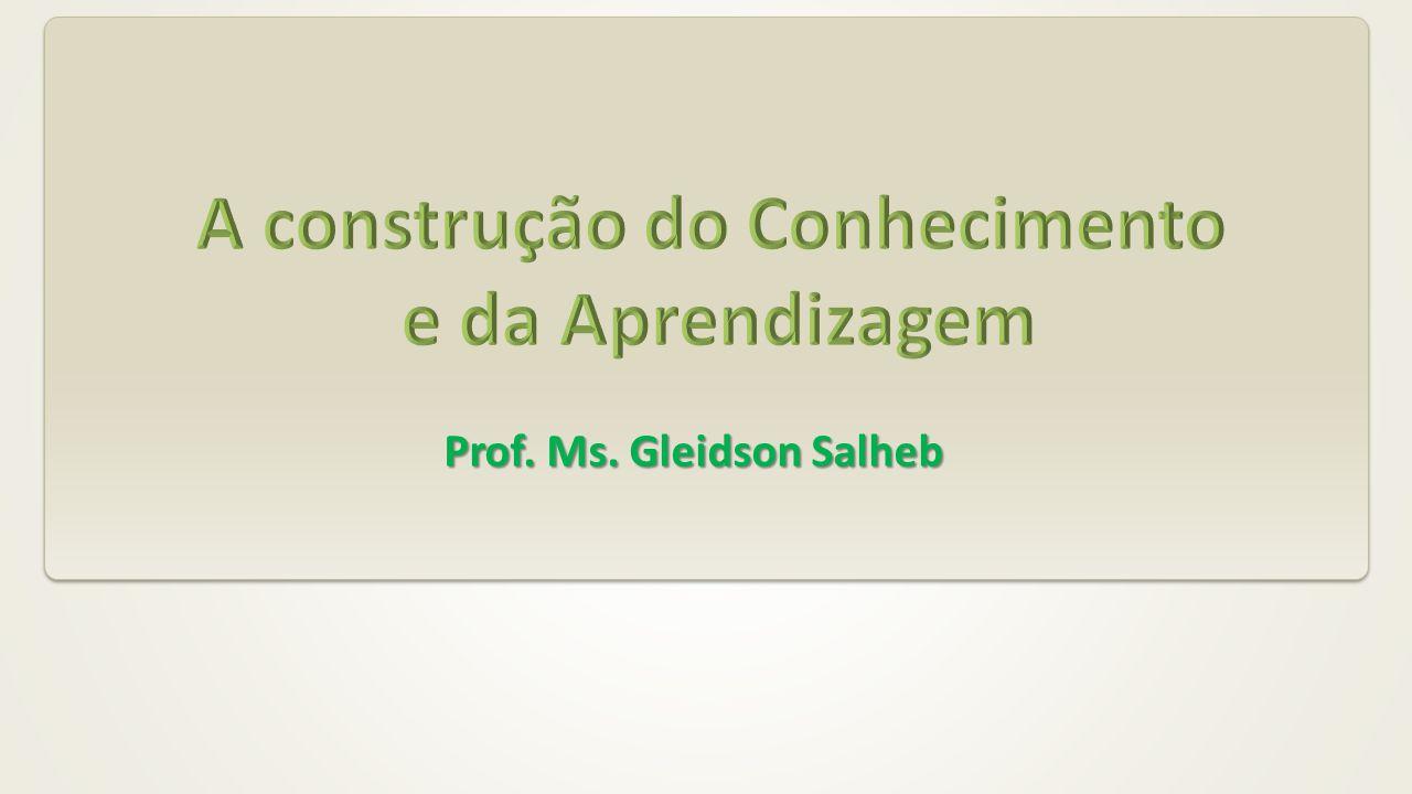 Prof. Ms. Gleidson Salheb