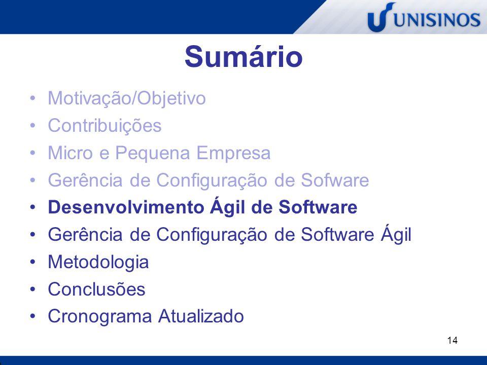 14 Sumário Motivação/Objetivo Contribuições Micro e Pequena Empresa Gerência de Configuração de Sofware Desenvolvimento Ágil de Software Gerência de C