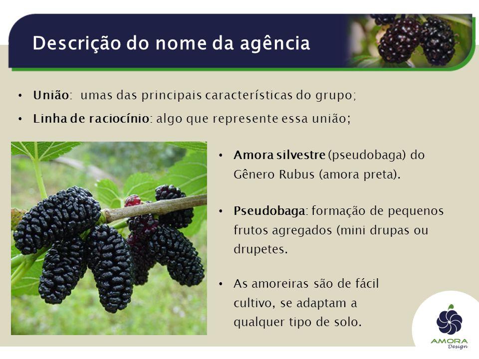 Descrição do nome da agência União: umas das principais características do grupo; Linha de raciocínio: algo que represente essa união ; Amora silvestre (pseudobaga) do Gênero Rubus (amora preta).