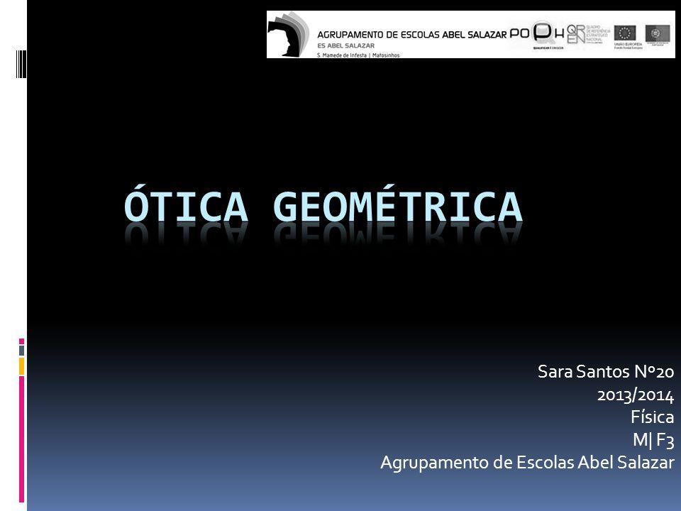 Sara Santos Nº20 2013/2014 Física M| F3 Agrupamento de Escolas Abel Salazar